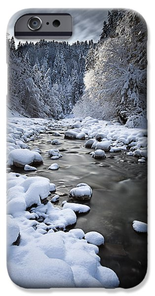 Pines iPhone Cases - Stream to winter iPhone Case by Dominique Dubied