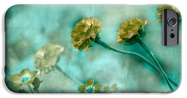 Luminescent iPhone Cases - Stretching Toward Morning iPhone Case by Bonnie Bruno