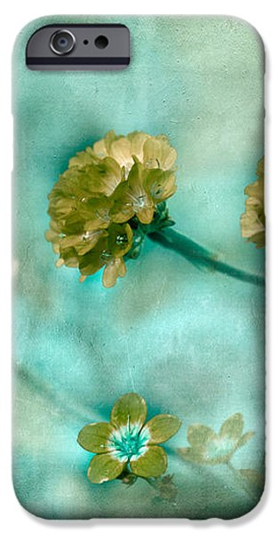 Stretching Toward Morning iPhone Case by Bonnie Bruno