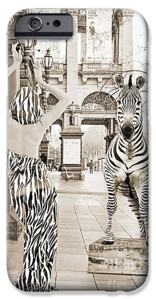 Zebra Prints iPhone Cases - Strike the Pose   monotone iPhone Case by Linda Lees