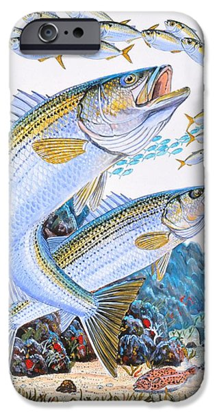 Stripes iPhone Cases - Striped Bass rocks iPhone Case by Carey Chen