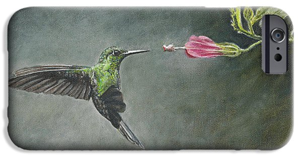 Stripes iPhone Cases - Striped Tailed Hummingbird iPhone Case by Rob Dreyer AFC