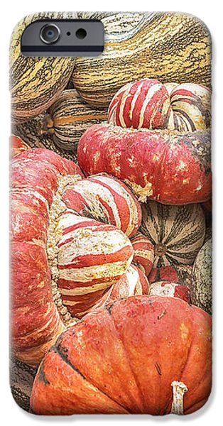 Stripes iPhone Case by Caitlyn  Grasso