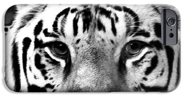 The Tiger iPhone Cases - Stripes iPhone Case by Dan Sproul