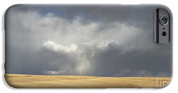 House iPhone Cases - Stubble Field Rain iPhone Case by Caryl J Bohn