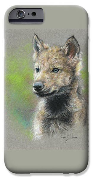 Animals Drawings iPhone Cases - Study - Baby Wolf iPhone Case by Lucie Bilodeau