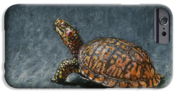 Boxes iPhone Cases - Study of an Eastern Box Turtle iPhone Case by Rob Dreyer AFC