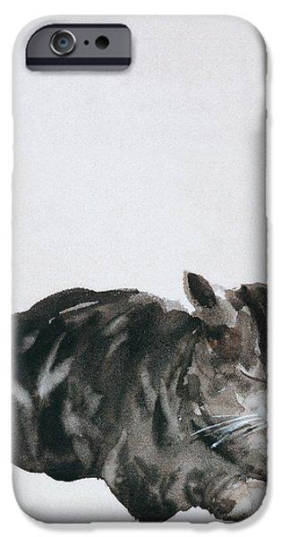 Study of Cat iPhone Case by Giuseppe De Nittis