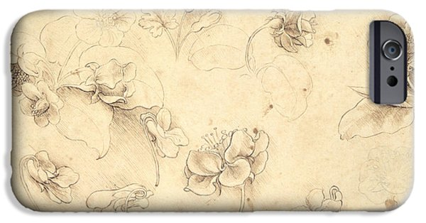 Renaissance iPhone Cases - Study of the Flowers of Grass like Plants iPhone Case by Leonardo da Vinci