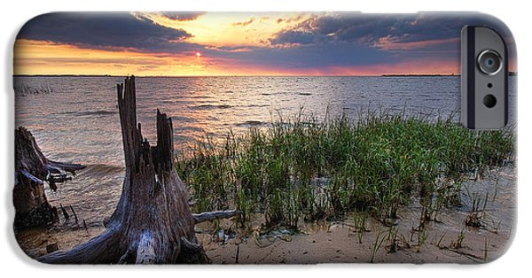 Micdesigns iPhone Cases - Stumps and Sunset on Oyster Bay iPhone Case by Michael Thomas