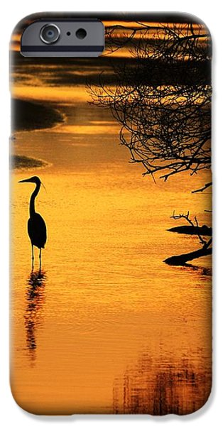 Sublime Silhouette iPhone Case by Al Powell Photography USA