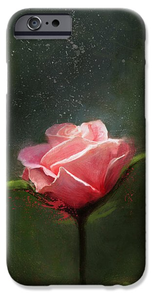 Rose iPhone Cases - Subtle Beauty iPhone Case by Steve Goad