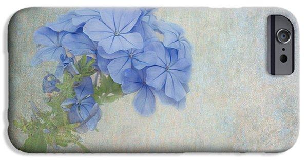 Subtle Colors iPhone Cases - Subtle Blues iPhone Case by Kim Hojnacki