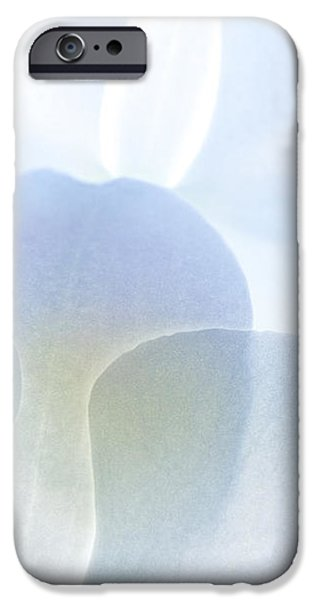 Subtle Symphony iPhone Case by Michelle Wiarda