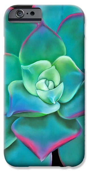 Florals Pastels iPhone Cases - Succulent Aeonium Kiwi iPhone Case by Laura Bell