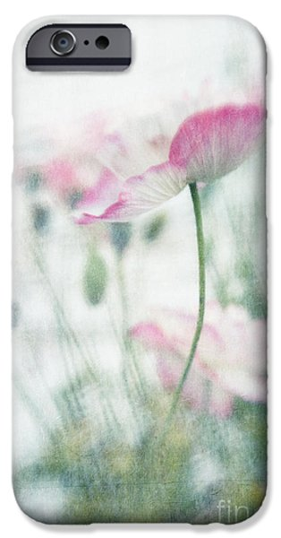 Close Up iPhone Cases - suffused with light III iPhone Case by Priska Wettstein