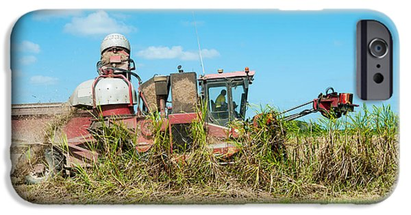 Machinery iPhone Cases - Sugar Cane Being Harvested, Lower iPhone Case by Panoramic Images