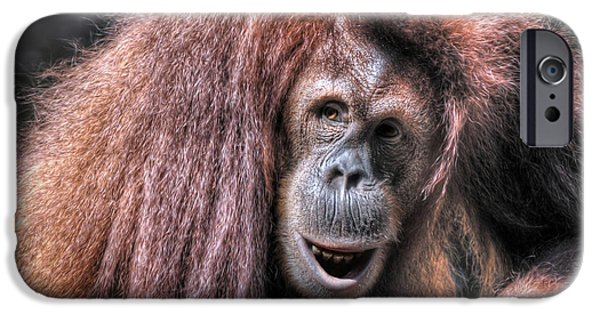 Orangutan Digital Art iPhone Cases - Sumatran Orangutan iPhone Case by Savannah Gibbs