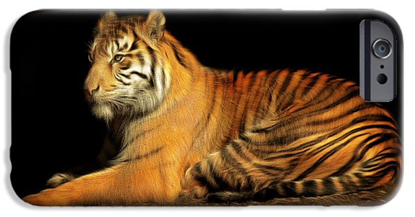 Eye Of The Tiger iPhone Cases - Sumatran Tiger 20150211brun iPhone Case by Wingsdomain Art and Photography