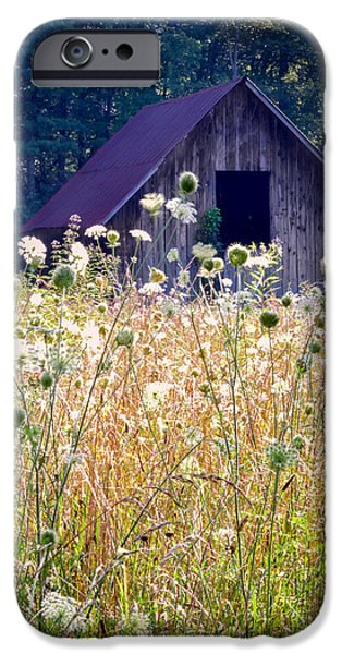 Old Barn Print Photographs iPhone Cases - Sumer Barn 2 iPhone Case by Rob Travis