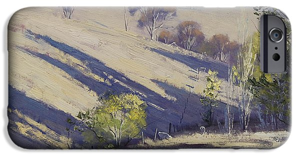Rural iPhone Cases - Summer afternoon shadows iPhone Case by Graham Gercken