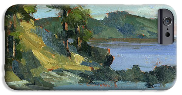 Summer iPhone Cases - Summer at Lopez Island iPhone Case by Diane McClary