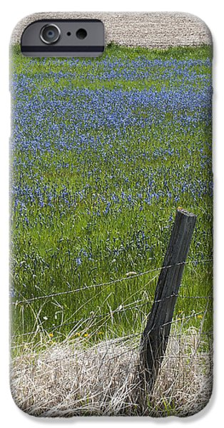 Contour Plowing iPhone Cases - Summer Blues iPhone Case by Doug Davidson