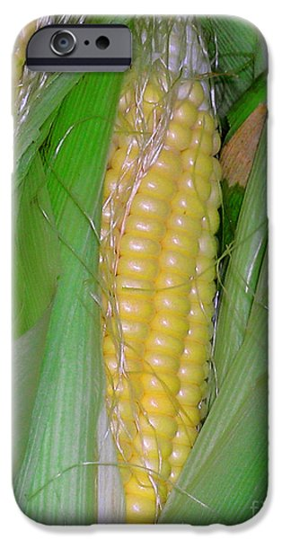 Sweet Corn Farm iPhone Cases - Summer Corn iPhone Case by James Temple