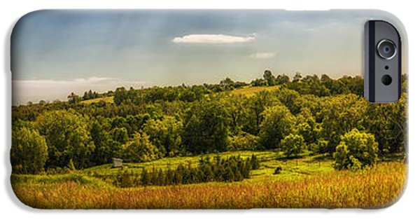 Meadow Photographs iPhone Cases - Summer countryside iPhone Case by Elena Elisseeva