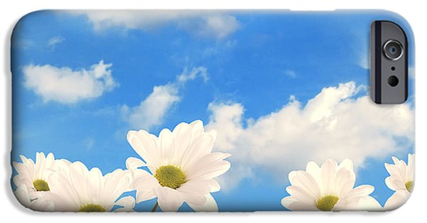 Garden Scene iPhone Cases - Summer Daisies iPhone Case by Amanda And Christopher Elwell