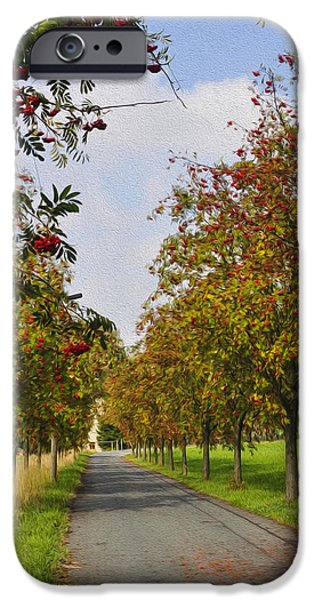 Fruit Tree iPhone Cases - Summer day in the country iPhone Case by Aged Pixel