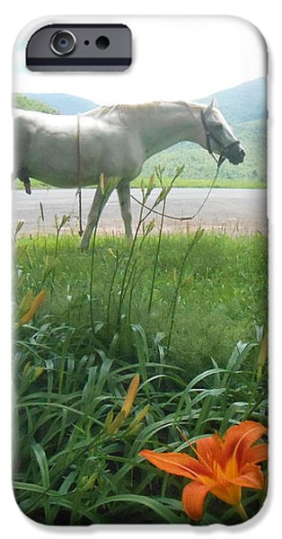Summer Day Memories with The Paso Fino Stallion iPhone Case by Patricia Keller