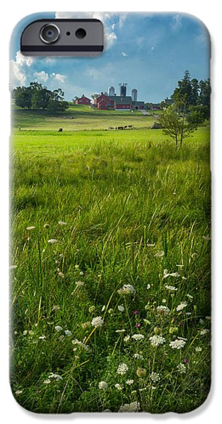 New England Dairy Farms iPhone Cases - Summer Days iPhone Case by Bill  Wakeley