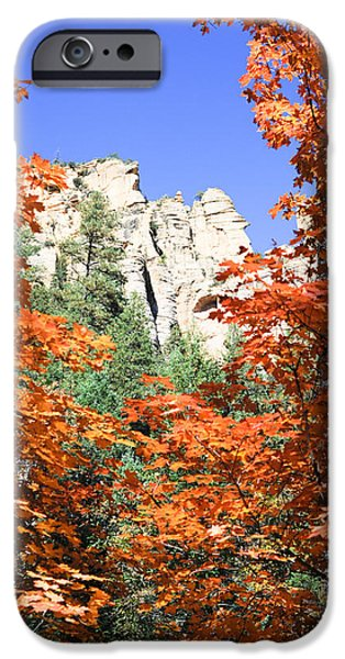 West Fork iPhone Cases - Summer Ends iPhone Case by Shannon Hastings