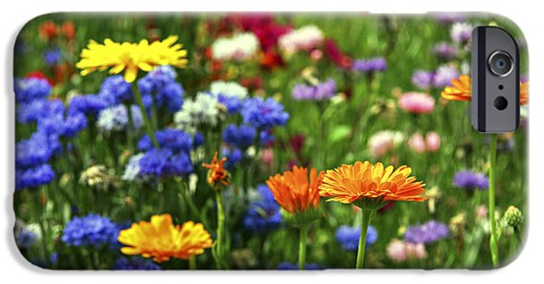 Meadow Photographs iPhone Cases - Summer flowers iPhone Case by Elena Elisseeva