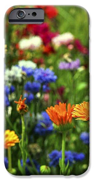 Summer flowers iPhone Case by Elena Elisseeva