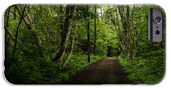 Pathway iPhone Cases - Summer Forest Tranquility - Beautiful Charlevoix Quebec Canada iPhone Case by Georgia Mizuleva