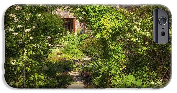 Garden Flowers Photographs iPhone Cases - Summer garden and path iPhone Case by Elena Elisseeva