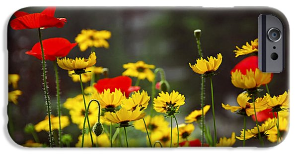 Botanical Photographs iPhone Cases - Summer garden iPhone Case by Elena Elisseeva