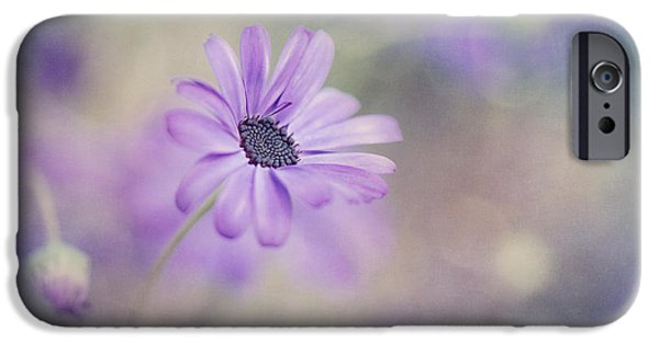 Daisy Bud iPhone Cases - Summer garden iPhone Case by Priska Wettstein