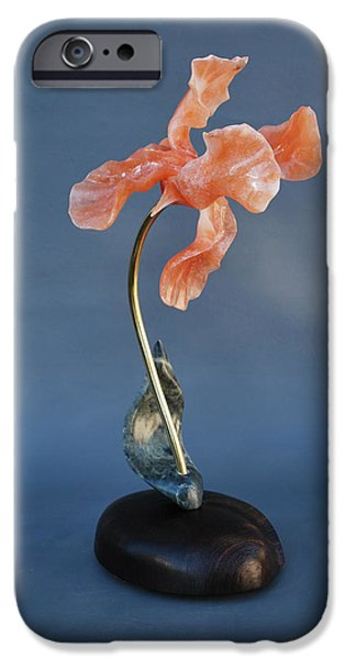 Plants Sculptures iPhone Cases - Summer Iris iPhone Case by Leslie Dycke