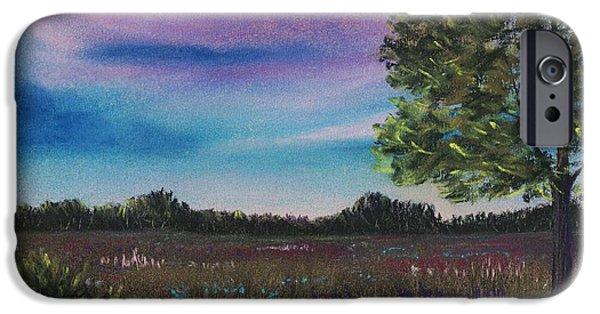 Purple Pastels iPhone Cases - Summer Meadow iPhone Case by Anastasiya Malakhova