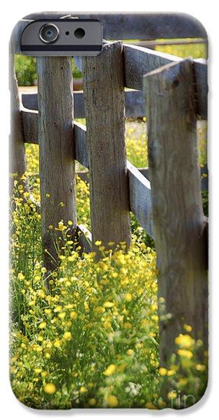 Corner iPhone Cases - Summer meadow iPhone Case by Elena Elisseeva