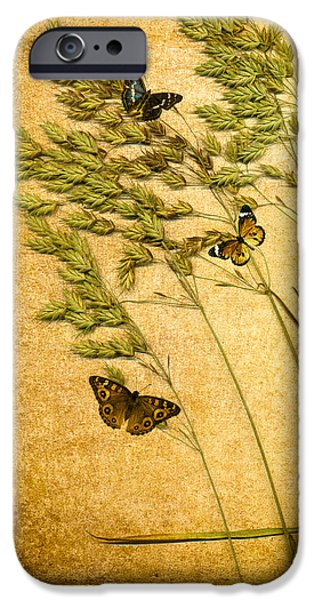 Copy iPhone Cases - Summer Meadow iPhone Case by Jan Bickerton
