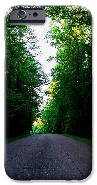 Colonial Parkway iPhone Cases - Summer On the Colonial Parkway iPhone Case by Nancy Comley