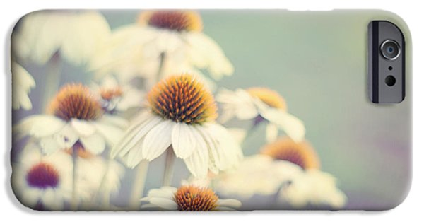 Cone Flower iPhone Cases - Summer of 75 iPhone Case by Amy Tyler