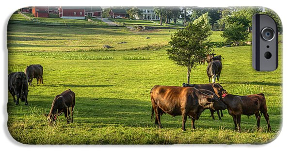 New England Dairy Farms iPhone Cases - Summer on the farm iPhone Case by Bill  Wakeley