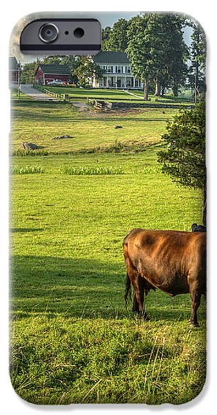 Summer on the farm iPhone Case by Bill  Wakeley