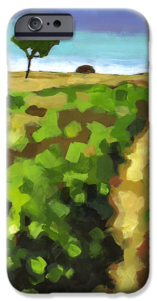Summer iPhone Cases - Summer Path iPhone Case by Douglas Simonson