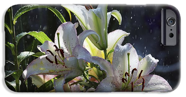 Asiatic Lily iPhone Cases - Summer Rain iPhone Case by Sharon  Talson